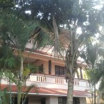 Kin-Hin (shanti bhavan)